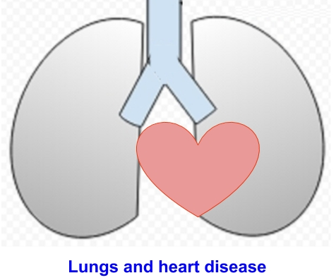 lungs and heart disease